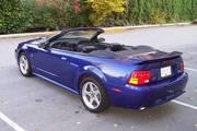 MINT 2003 Mustang GT Premium convertible