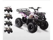 YOUTH SIZED ATVS WITH REVERSE AND REMOTE 125CC