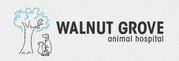 Clinic for pet treatment Langley - Walnut Grove Animal Hospital